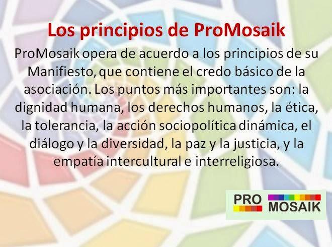 Presentation of ProMosaik e.V. in Spanish