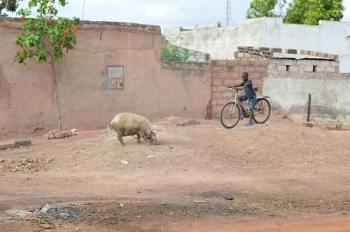 Stop tratta, per far ripartire lo sviluppo dall'Africa subsahariana