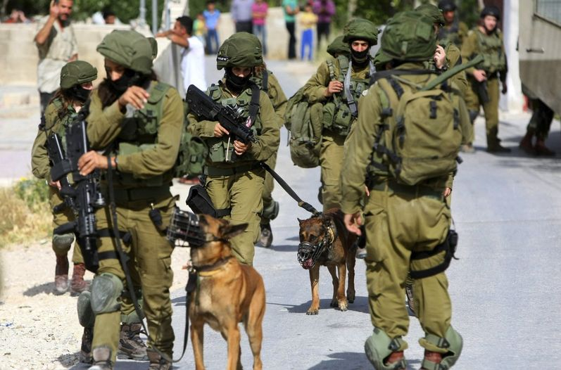 Victory! There will be no more Dutch dogs of war for Israeli Army!