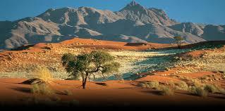 Poesia del giorno. Anonimo della Namibia