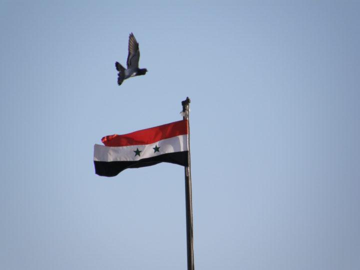 Una strategia nonviolenta per la liberazione della Siria