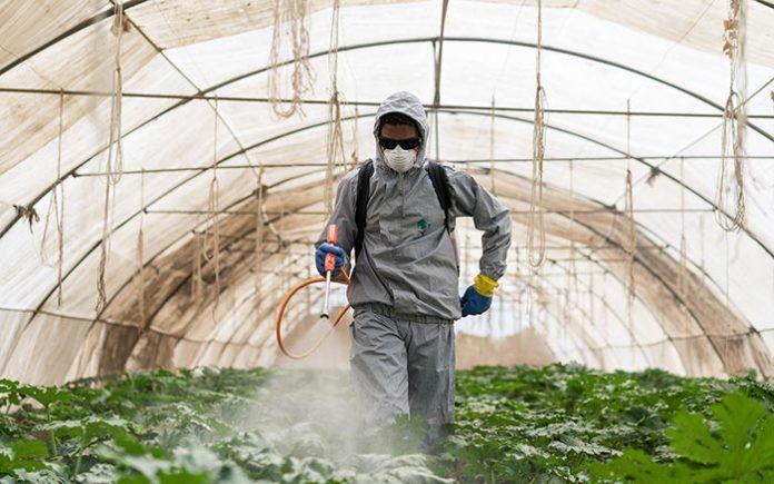 Un rapport de l'ONU remet en cause l'utilité des pesticides