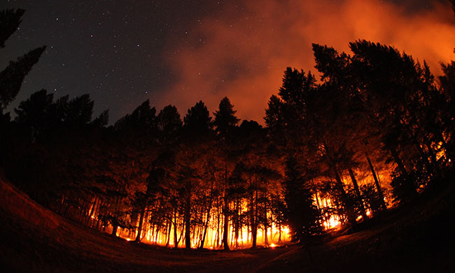 Wildfires Are Essential: The Forest Service Embraces a Tribal Tradition