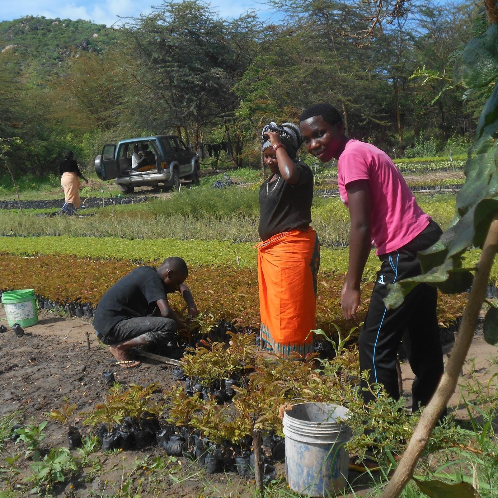 CCDO in Tanzania – for the eradication of poverty