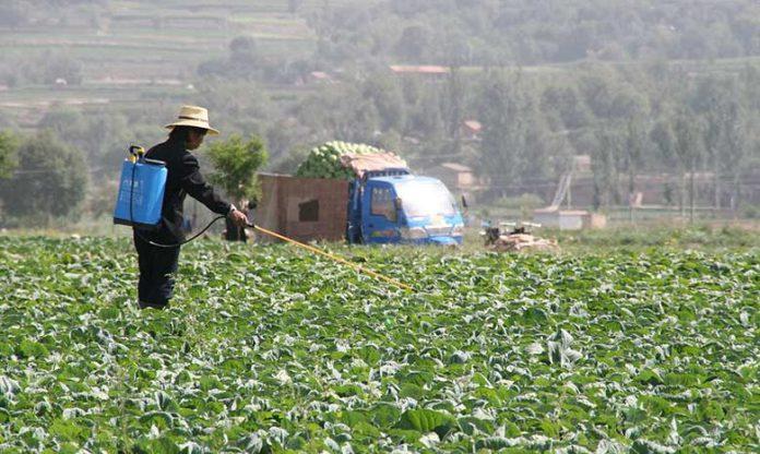 Pesticides : la Suisse exporte des produits interdits vers les pays en développement