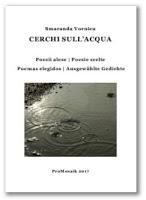 Smaranda Vornicu – Wasserkreise