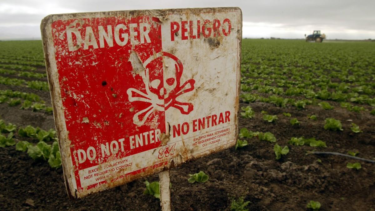 Study Links Bangladeshi Children's Deaths To Pesticide