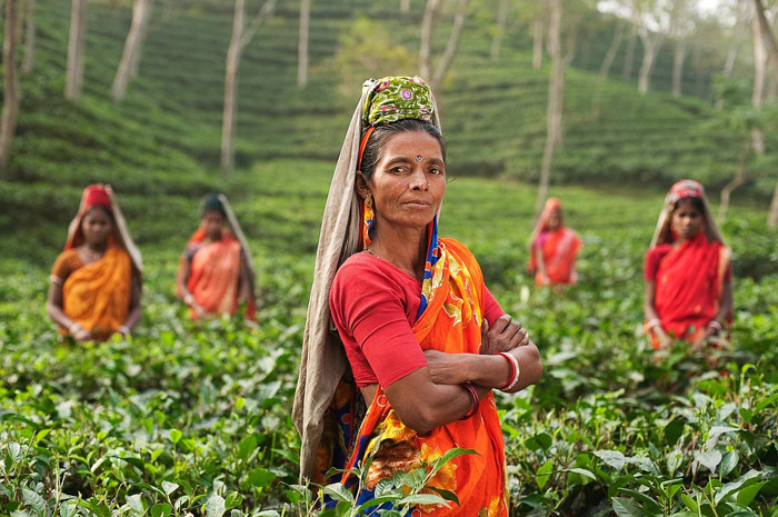 Empowering Women Can Bring About Development