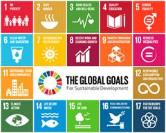 Monitoring Progress on UN's Sustainable Development Goals