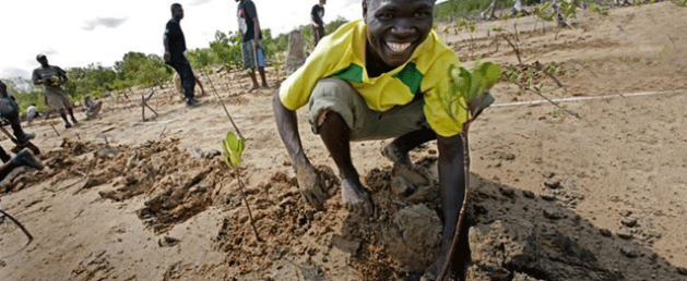 Communities Can be Role Models for Sustainable Development