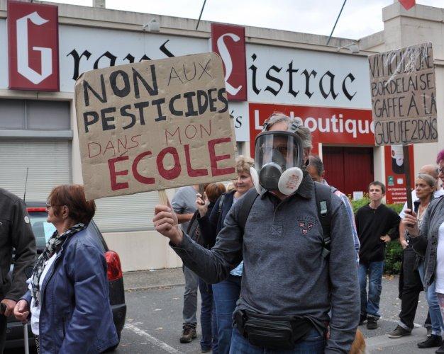 Dans le Médoc, on a marché contre les pesticides dans les vignes