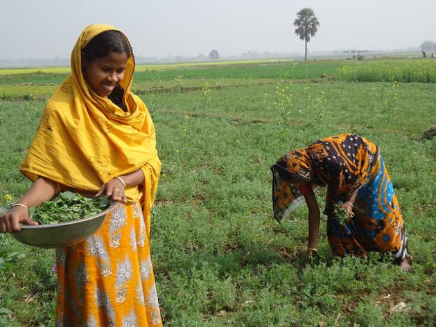 Women are Pivotal to Addressing Hunger, Malnutrition and Poverty