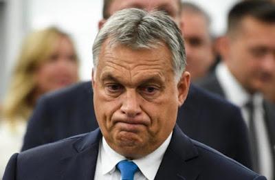 Grazie Ungheria, ci hai fatto vedere il vero Parlamento dell'Europa dei popoli