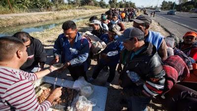 Al menos 20 caravanas migrantes han traspasado por México