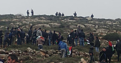 L'occupation réprime une marche à Bil'in