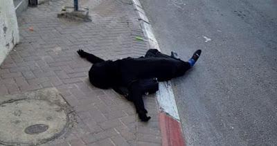 Une jeune Palestinienne assassinée par l'occupation israélienne à l'est de Jérusalem