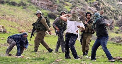 Des gangs de colons israéliens saccagent des biens appartenant à des Palestiniens à Naplouse