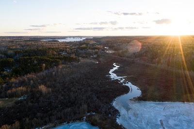 Un projet d'exploitation minière dans une zone boisée du Minnesota était bloqué… jusqu'à ce que Trump soit élu président