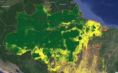 L'Amazzonia in fiamme e Petrobrás venduta alle multinazionali, è la fine della sovranità del Brasile.