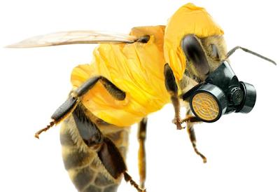 Come l'agrochimica distrugge la biodiversità e manipola la scienza