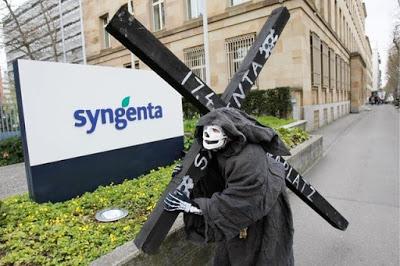 Syngenta en la mira: Pesticidas prohibidos en Suiza y en la UE son exportados a Brasil